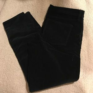 J Crew Velvet Pants