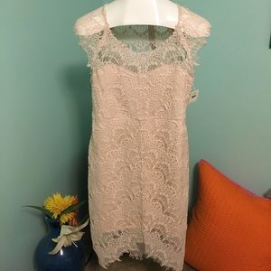 Blush Lacey dress