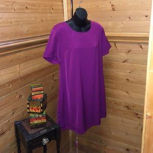 Solid purple shift Dress NWT large