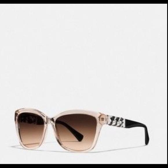 623a97d27185 ... cheap authentic coach whiplash wayfarer sunglasses dbe1c 54b2f