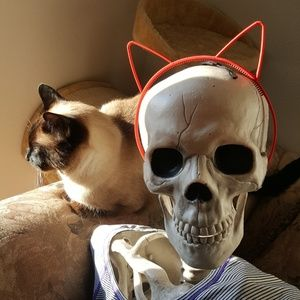 NWOT Red Cat Ears Headband