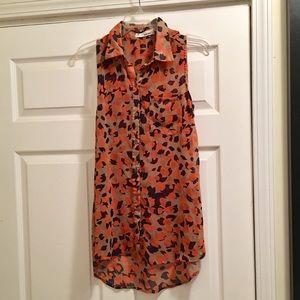 Sans Souci Sheer Tunic Top/Dress!