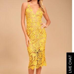 Dress the Population Yellow Lace Dress