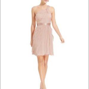 Blush Adrianna Papell Dress