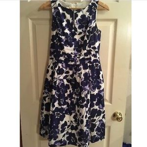 Eva Picone dress navy blue. With pockets!