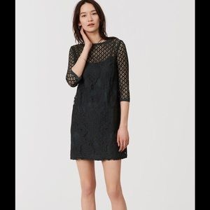 Ann Taylor loft diamond lace shift dress