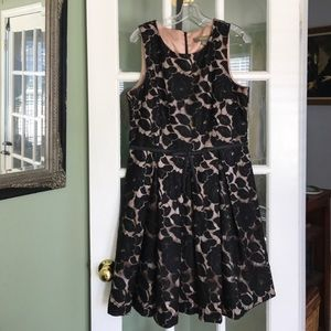 Taylor brand lace cocktail dress