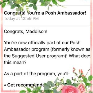 Accessories - SUGGESTED USER/POSH AMBASSADOR