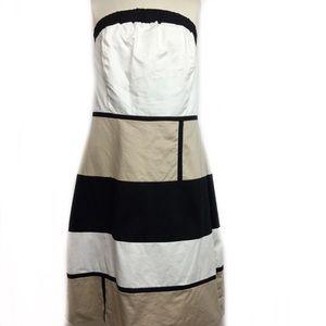 Ashley Stewart Women's Dress size 14W