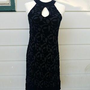 🍁NEW🍁Muse midi-length black velvet dress