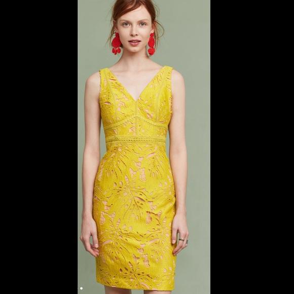64710126ed89 Anthropologie Dresses | Maeve Gardenia Lace Column Dress | Poshmark