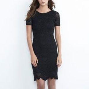 Velvet by graham and Spencer lace dress revolve
