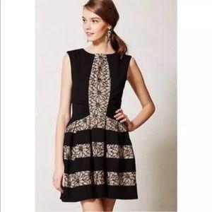Eva Franco Strata Dress in Black