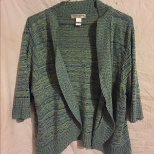 Christopher & Banks sweater size petite XL