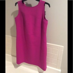 Ann Taylor pink knit dress