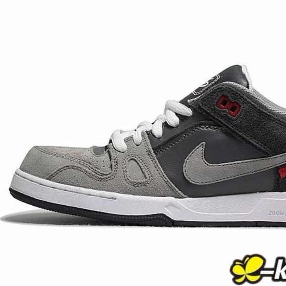 Nike Zoom Air 6.0 Skateboard Sb Gray Sneakers Shoe
