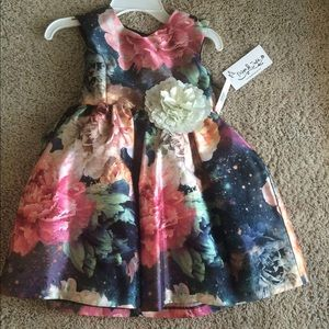 NWT Tags Pippa & Julie Dress