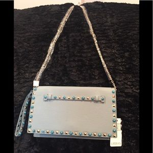 Beautiful women's clutch