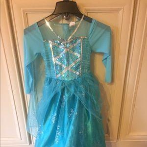 Other - Elsa costume