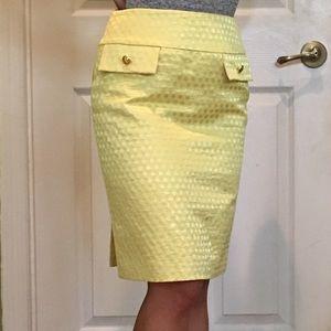 Ladies Work Skirt