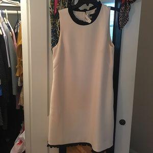 BEAUTIFUL J CREW dress NWT