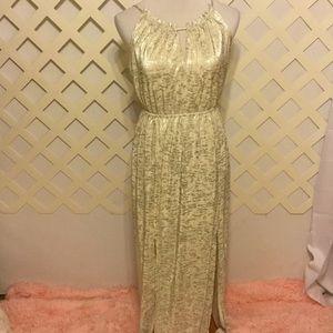 Silver and Cream Maxi Dress