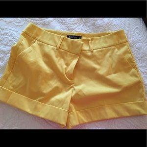 Fancy bright yellow Shorts from NY&Co size 14