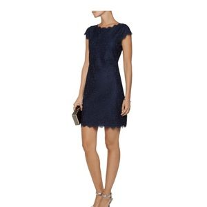 NWT DVF Lace fitted dress - back zip - size 6