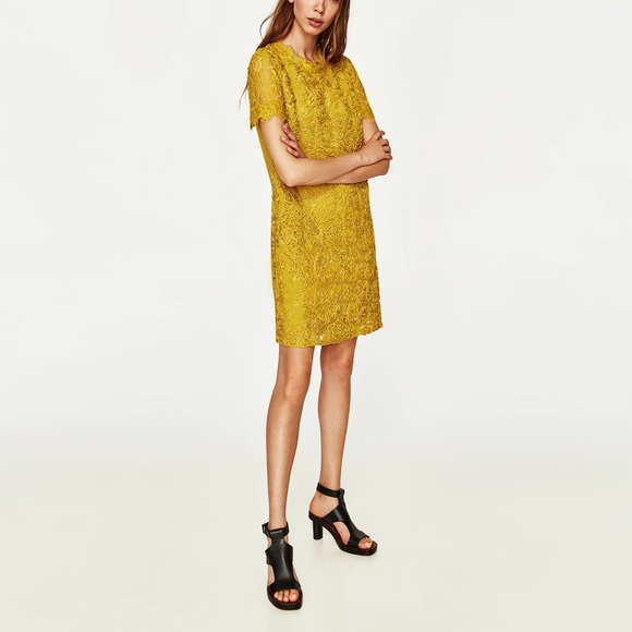 2117bbe0931 Zara contrast lace dress in mustard color NWT