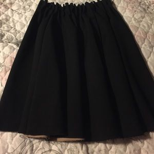 Zara Basic Skirt
