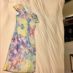 Parker Floral dress with zipper in the back