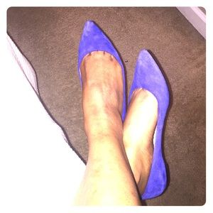 Blue Ballerina pointed flats