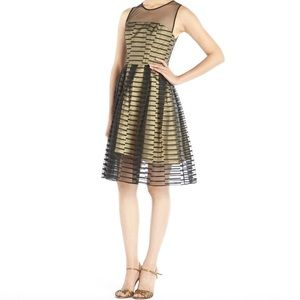 BOLD 💋 ABS Gold and Black Dress 💖
