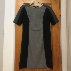 Loft Professional Dress