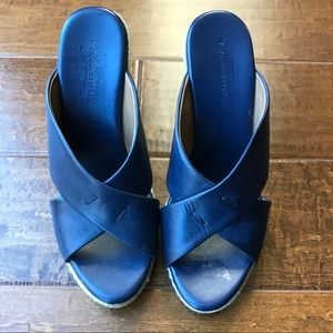 Banana Republic Blue Wedge heels