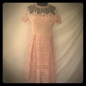 Gorgeous blush lace dress