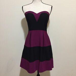 NWT Color Block Strapless Skater Cocktail Dress