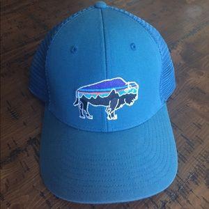 Patagonia Fitz Roy Bison Hat