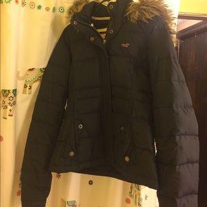 Hollister Winter Jacket