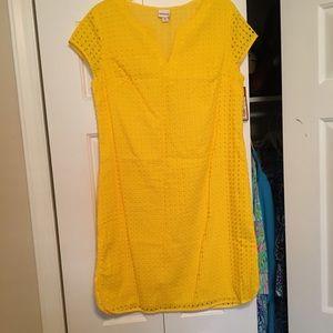 NWT Merona Shift Dress