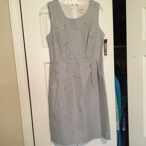 NWT Seersucker Shift Dress