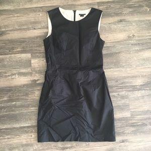 Theory dimesia cotton dress
