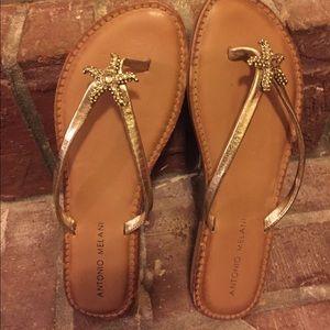 a31408f786eebc ANTONIO MELANI Shoes - Antonio Melani Starfish Sandals