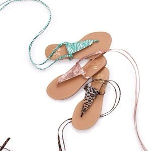 Colin Stuart zebra wrap around thong sandal 8.5