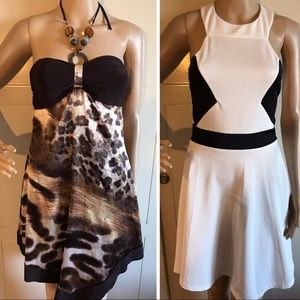 Bundle of Two Strapless Dresses