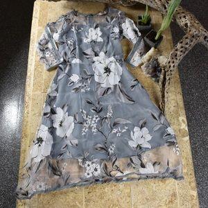 Japanese painted flowers mesh dress