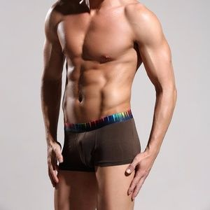Other - NWT Men's Brown Rainbow Bamboo Boxer Briefs. SMALL