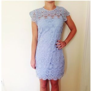 Endless Rose lace shift Dress in Powder Blue S