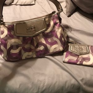 Euc/guc coach bag