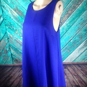 Everly Periwinkle Blue Swing Dress